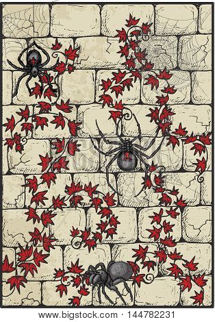 Gothic background with horror spiders and cobweb on old stone wall with ivy leaves. Doodle line art illustration and hand drawn graphic sketch, mystic and Halloween concept
