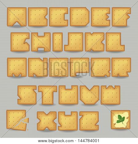 Cracker artistic font. Unusual alphabet. Set of yellow letters one broken cookie with crumbs one cookie with butter and sprig of parsley. Vector illustration