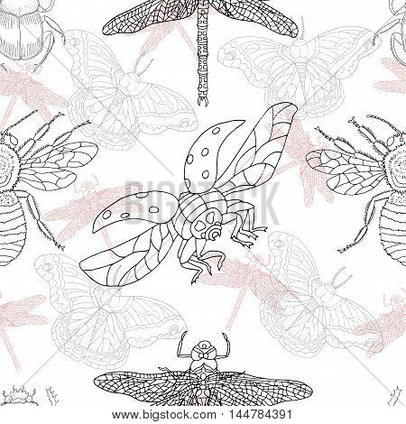 Seamless graphic background with dragonfly, bee, ladybug and butterfly on white. Doodle illustration with vintage summer elements, hand drawn repeated pattern