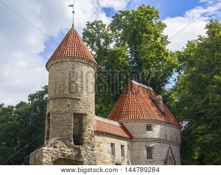 background cityscape view of the Viru Gate in the old town of Tallinn, Europe