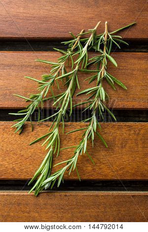 Branch of green rosemary on wooden table.