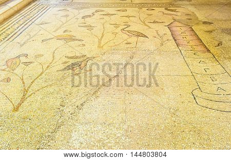 TABGHA ISRAEL - FEBRUARY 22 2016: The mosaic floor of the Multiplication Church with the Nilometer and wetland birds and plants on February 22 in Tabgha.