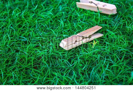 Clothespin on the background grass apply design and background.