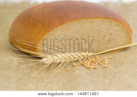 wheat and rye hearth sourdough brown bread wheat spike and a handful of wheat grain on sackcloth closeup with a blurred background