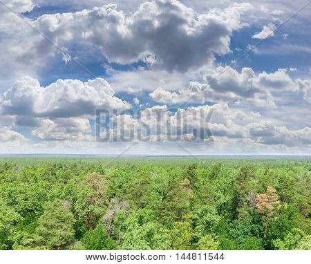 Sky with cumulus clouds over deciduous and coniferous forest in summer day