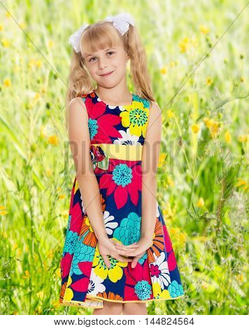 Beautiful little girl with long blonde ponytails on her head tied with white bows, bright summer dress and knee socks.On the background of green grass and yellow wild flowers, blurring the background.