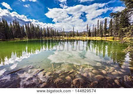 Autumn day in Jasper National Park in the Rocky Mountains.  Small shallow lake surrounded by pine forest. The mirror surface of water reflects the cloudy sky
