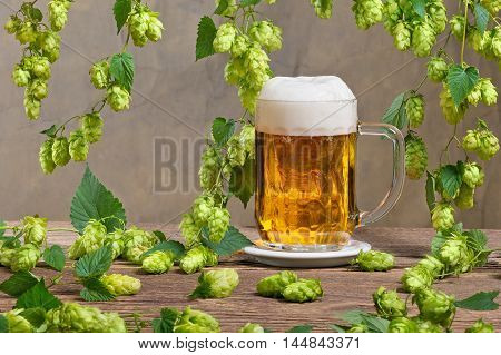 glass of beer and hops on the dark background