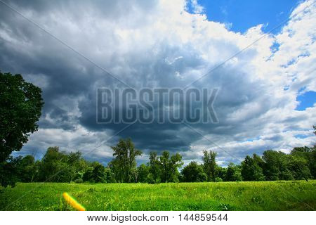 White Clouds And Green Meadow