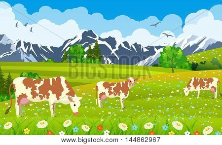 Three cows in a landscape and a farm. meadows and mountains Organic and natural food concept. vector illustration
