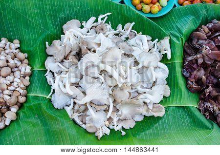 pile of sajor-caju mushroom in wicker basket for sale in local market in thailand