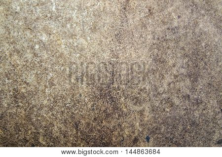 closeup old leather surface texture and background