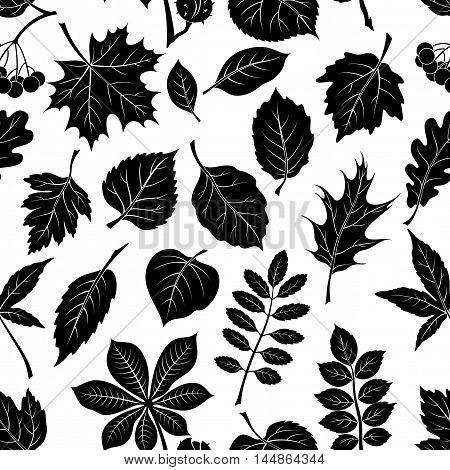Seamless Pictogram Tree Leaves Dogrose, Oak, Iberian Oak, Maple, Liquidambar, Hawthorn, Poplar Silver, Hazel, Elm, Birch, Linden, Rowan, Chestnut, Buckeye, Viburnum, Chokeberry, Lilac and Teak. Vector