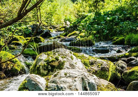 mountain river. in summer rocky mountain river water silk