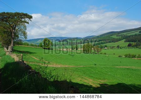 Tweed valley looking westwards near Innerleithen Peebleshire