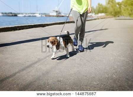 Young woman walking dog on river quay