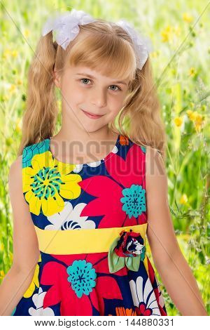 Sweet, adorable little girl with long blonde ponytails on her head tied with white bows. Close-up.On the background of green grass and yellow wild flowers, blurring the background.