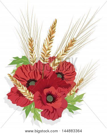 Poppy flowers and ear of wheat. Vector illustration. Floral summer background with red poppy flowers.. Natural floral template for greeting card, invitation, backgrounds, frames