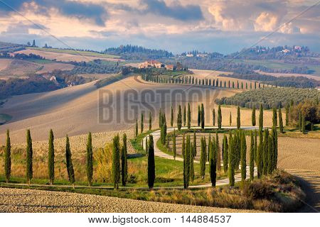 Landscape of hills, country road, cypresses trees and rural houses - Tuscany nature, rural Italy, Europe