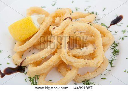 Deep fried calamari rings with decoration. Seafood