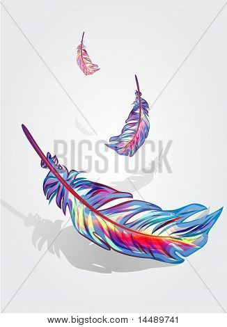 Beautiful Falling Feathers