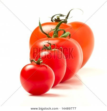 Tomato Abstract