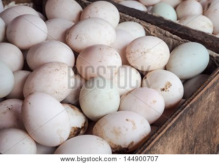 Organic duck eggs at the local farmers market
