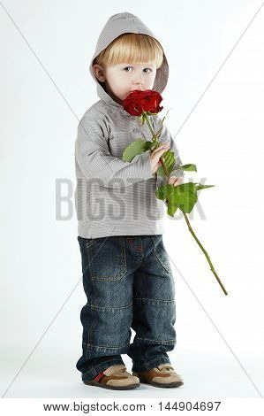little funny beautiful boy with rose isolated