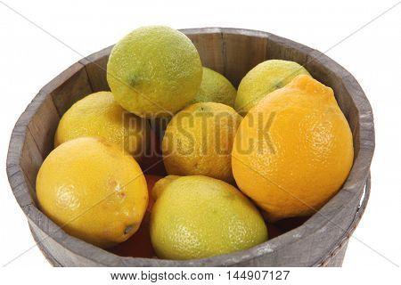 harvest of fresh raw lemon in wooden bucket isolated over white background