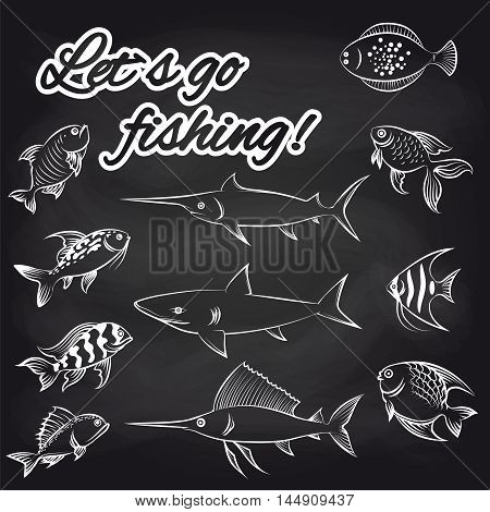 White hand drawn fish on chalkboard and text Lets go fishing. Vector illustration