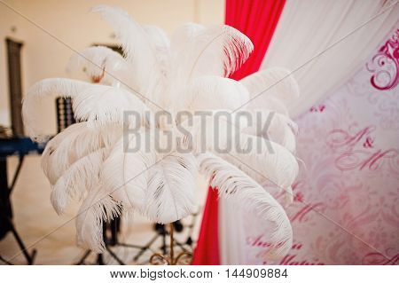 Elements feathers at wedding decoration at wedding day
