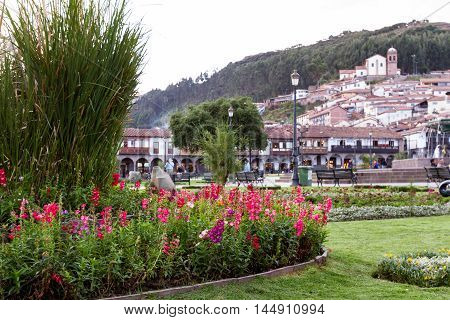 Cusco Peru - May 13: Beautiful blooming flowers in the Plaza de Armas with colonial buildings in the background. May 13 2016 Cusco Peru.