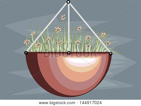 hanging basket with flowers on blue background