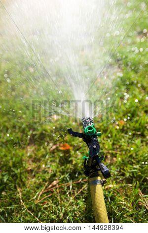 Closeup of a sprinkler watering a garden.