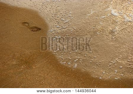 Lonely footstep on sandy beach and place for text, top view