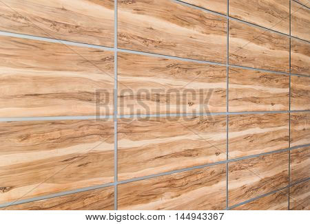 Texture simulated wood panels perspective, modern interior