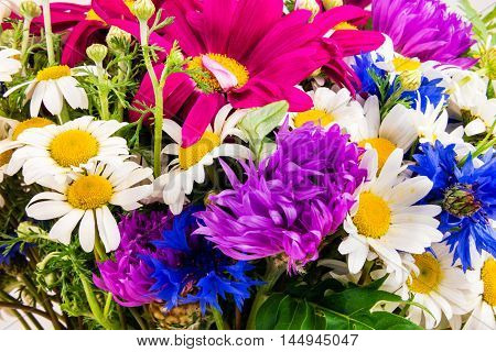 Beautiful bouquet of bright wildflowers. Bouquet of summer wildflowers.