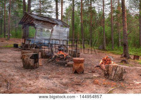 Campfire and stumps near the gazebo in the forest in summer day