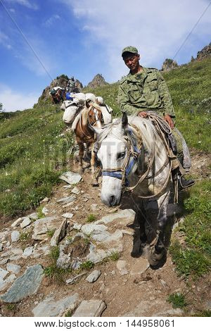 ALTAI MOUNTAINS, RUSSIA - 14 JULY, 2016: Local people using horses for transportation on Belukha Mountain, Altai Republic, Russian Federation