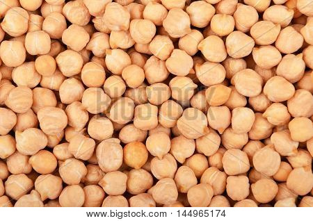 Close Up Of Chickpea