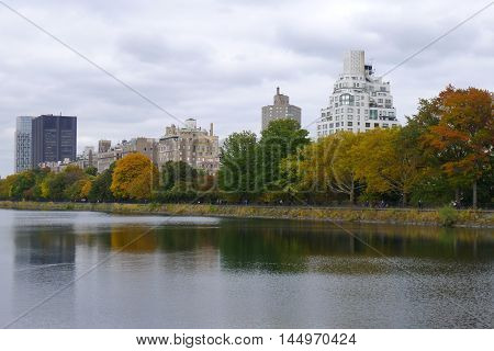 Rows of Trees and Buildings by Central Park Reservoir in NYC