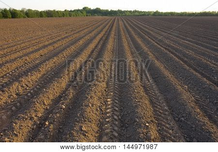 tractor harrow land arable land is black sow grain in the ground