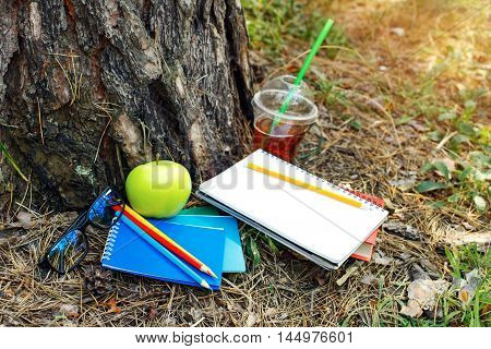 Notebooks book colored pencils glasses green apple and juice at park under a tree in autumn sunset light