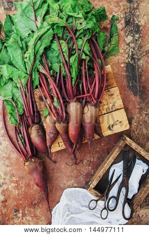 Beetroot On Wooden Surface. Fresh Picked Organic Beetroot On Ol
