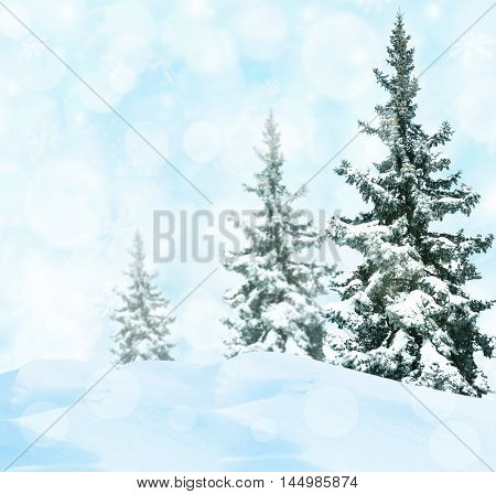 Fir-trees on perfect abstract winter background with snowflakes