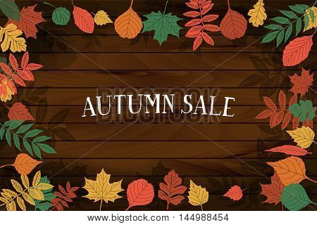Autumn Sale. Vector Banner