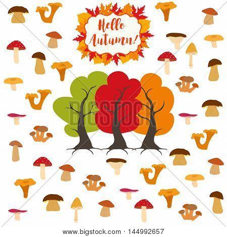 Mushroom, edible and inedible mushrooms, autumn trees and mushrooms. Vector illustration.