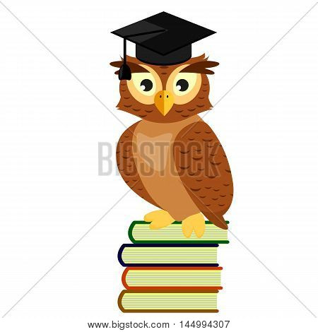 Owl graduate in cap sitting on a pile of books, isolated on white background