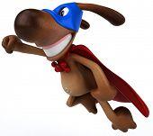 Постер, плакат: Супер собака