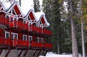 image of log cabin  - Log building of a mountain lodge in winter at ski resort with pine trees - JPG